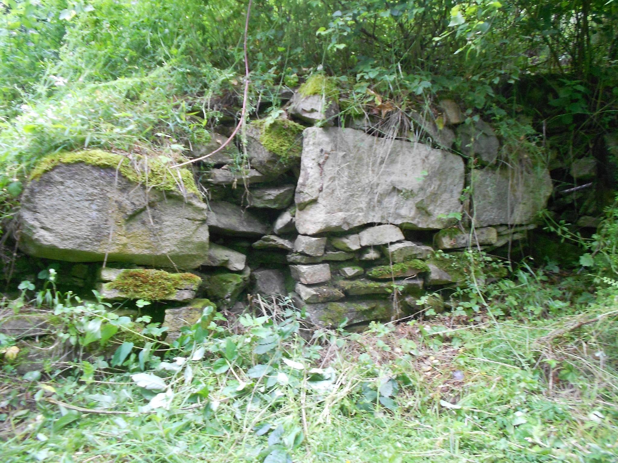 Keltské oppidum Třísov