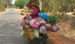 Stáž v Kambodži 2.