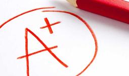 Výsledky škálování v segmentu vysokých škol