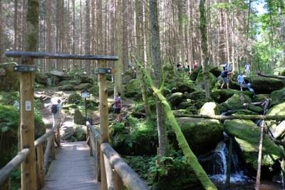 4. koupání ve Vodopádech sv. Wolfganga na Menší Vltavici.JPG