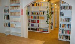 Josef Petr Ondok's Library